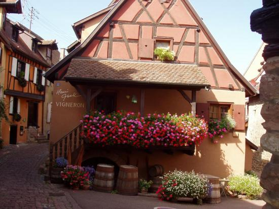 Alsace Eguisheim