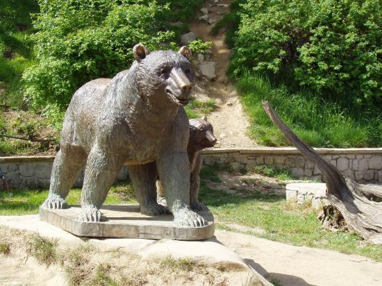 l'ours de Metsovo