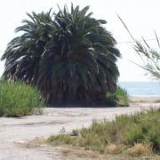 St-Juan-de-los-Terreros