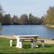 bord de Saône