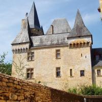 saint Léon sur Vézère  le chateau des Clérands