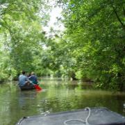 Marais poitevin  Arçais le canal