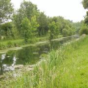 Marais poitevin canal le Mignon