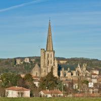 la cathédrale saint Maurice de Mirepoix