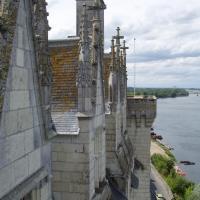 Montsoreau  La Loire vue des remparts