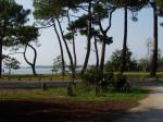 le lac vu du parking camping car