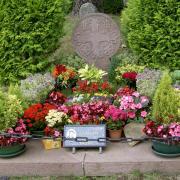 tombe de Luis mariano